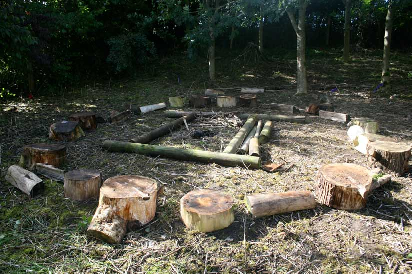 Piddle Valley First School - 'Forest School'